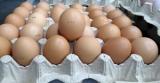 Яйцо отборной категории